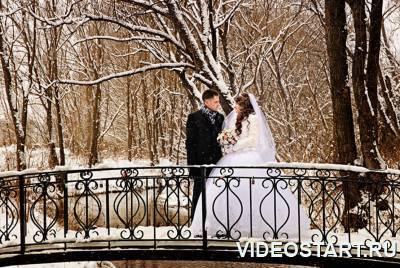 Фото и видео свадьбы 2015