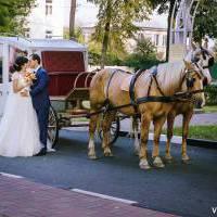 фотосъемка свадьбы Губкин