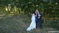 свадьба губкин, видеооператор на свадьбу