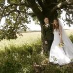 Видеосъёмка свадьбы в Губкине www.videostart.ru